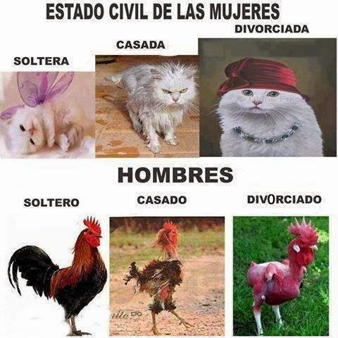 estado civil