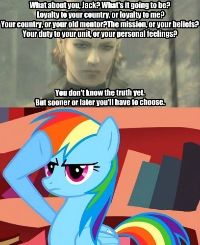 loyalty,element of harmony,rainbow dash