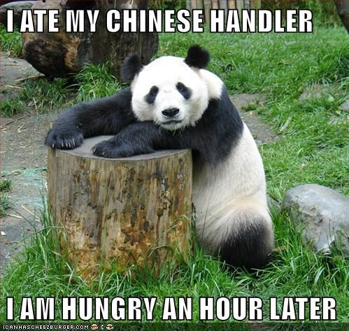 animals panda chinese food - 8488604160