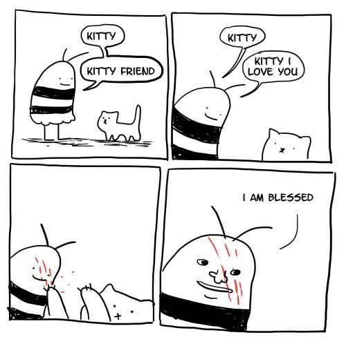 funny-web-comics-a-cats-blessing