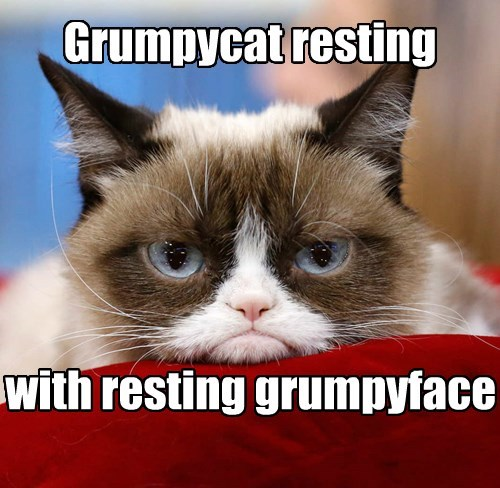 Resting Grumpyface