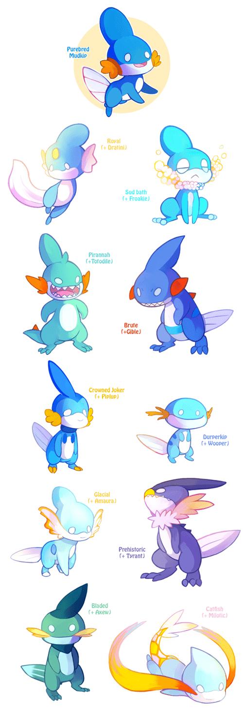 pokemon memes mudkip variations