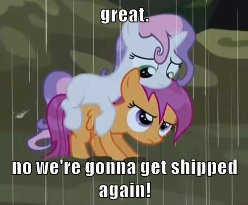 Sweetie Belle,scottaloo,ship