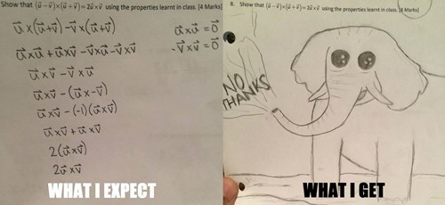 funny-school-test-fail-answer-doodle