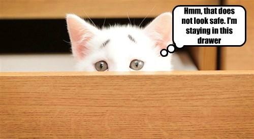 safe drawer concerned kitty - 8489056512