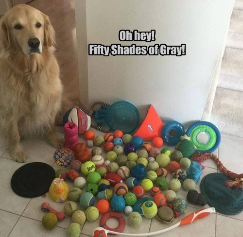 balls dogs toys 50 shades of gray - 8489214976