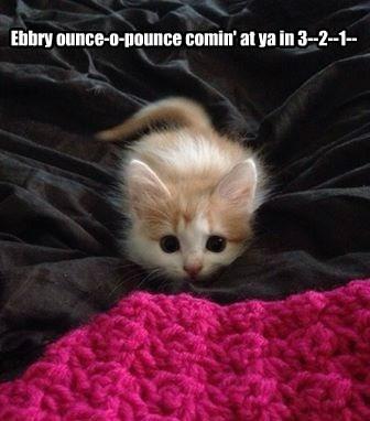 Ebbry ounce-o-pounce comin' at ya in 3--2--1--