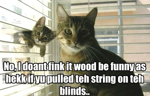 No, I doant fink it wood be funny as hekk if yu pulled teh string on teh blinds..
