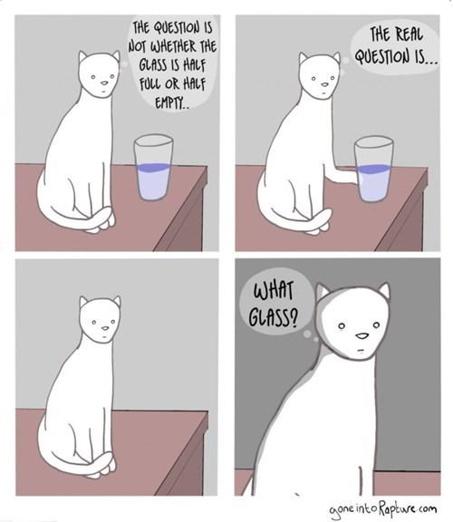 funny-web-comics-asking-a-cat-the-hard-questions