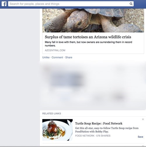 funny-facebook-fail-turtle-soup-juxtaposition