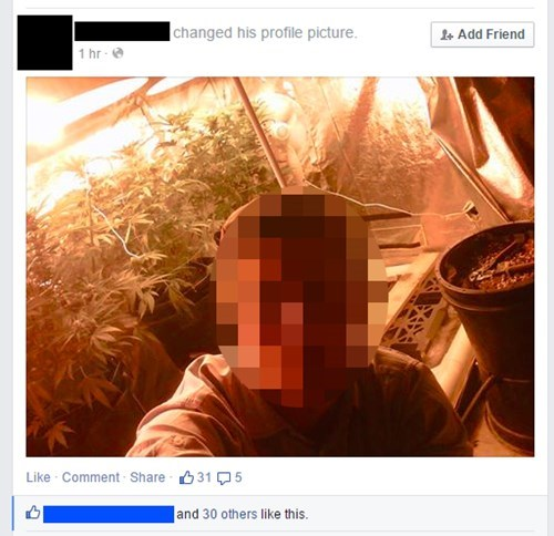 funny-facebook-fail-weed