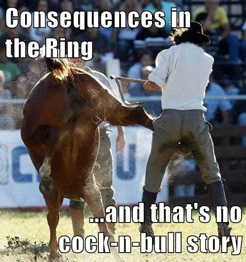 bull,puns,right in the crotch
