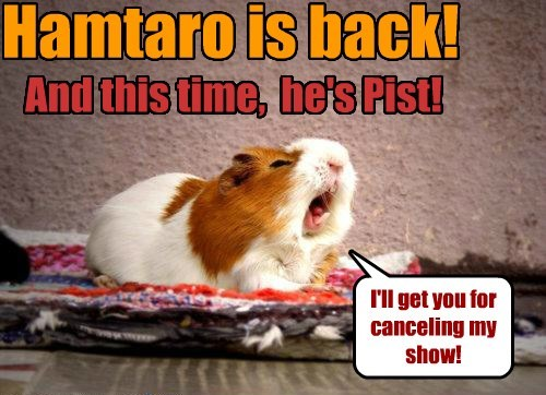 Hamtaro is back! And this time, he's Pist! I'll get you for canceling my show!