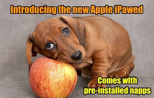 puppy puns cute apple - 8491880704