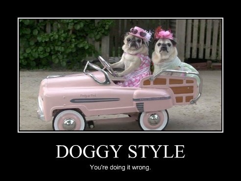 DOGGY STYLE You're doing it wrong.