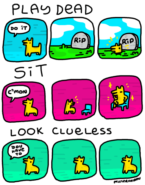 funny-web-comics-three-tricks-all-dogs-should-learn