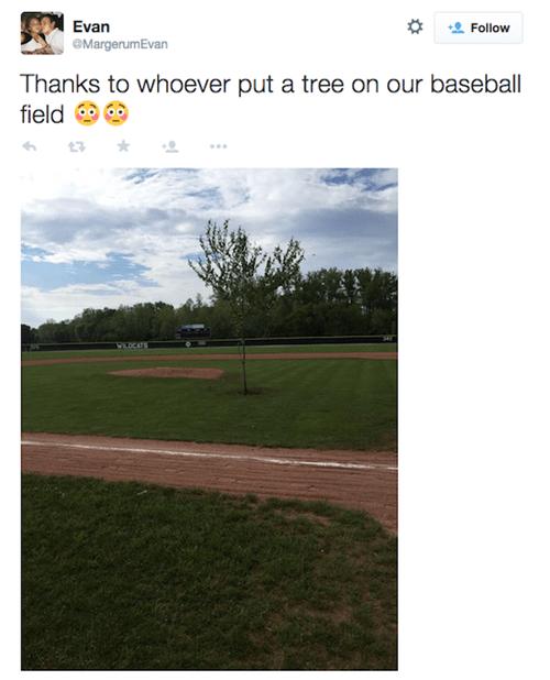 funny-twitter-fail-pic-baseball-tree