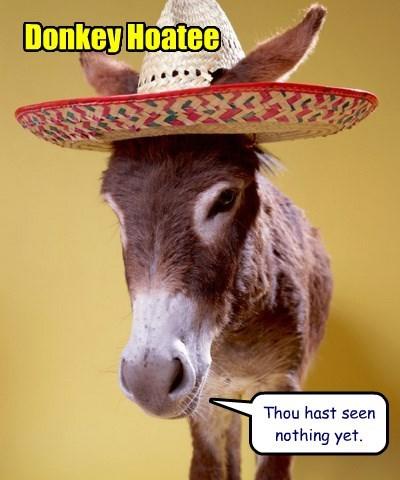 Donkey Hoatee