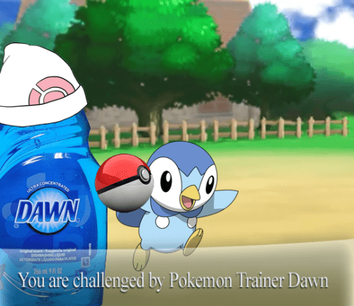 pokemon memes trainer dawn