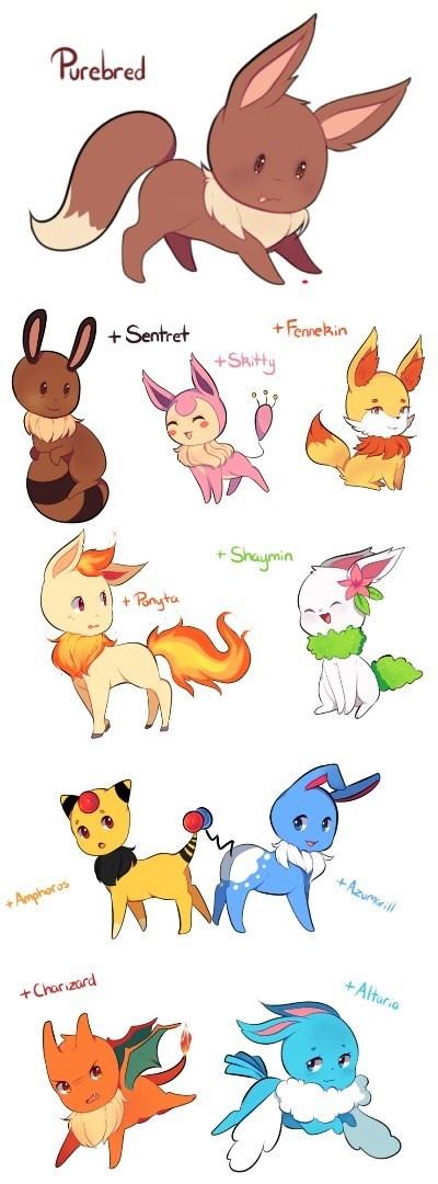 pokemon memes eevee variations