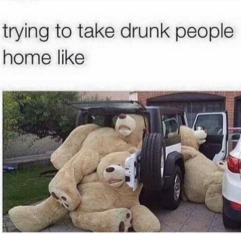drinking designated driver image It's Like Herding... Giant Plush Bears