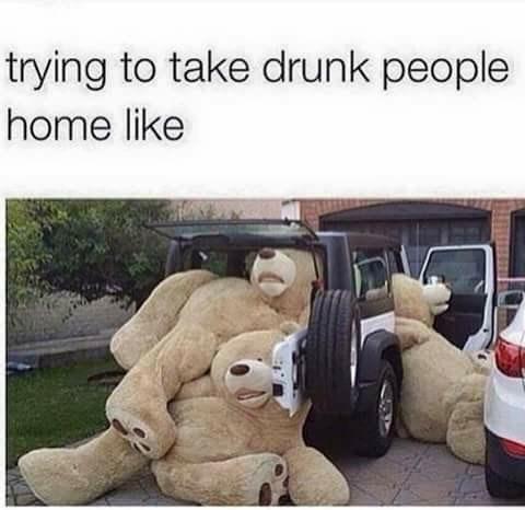 drinking designated driver image It's Like Herding... Giant Plush Bears