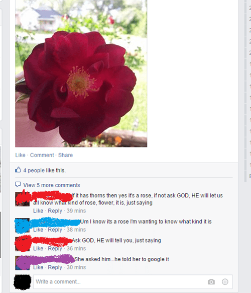religion Flower burn google failbook g rated - 8493216512