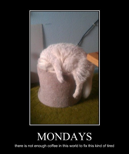 MONDAYS there is not enough coffee in this world to fix this kind of tired