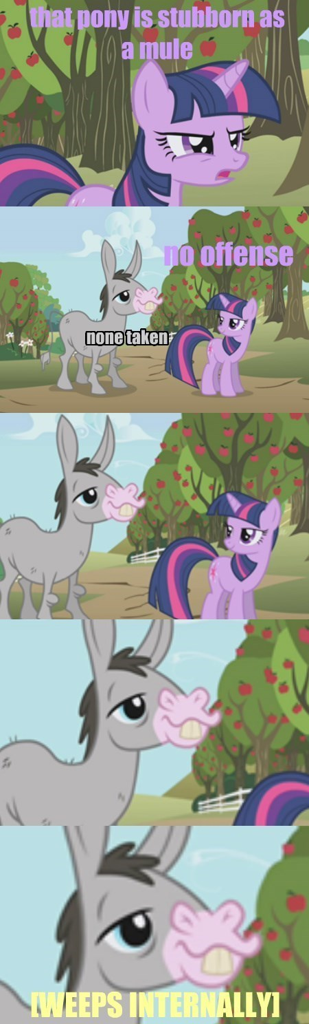 mule twilight sparkle offensive - 8495523840