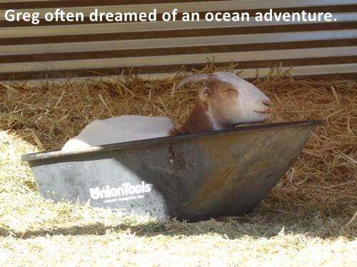 Greg often dreamed of an ocean adventure.
