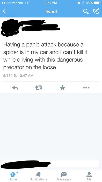 funny-twitter-fail-spider-car-driving