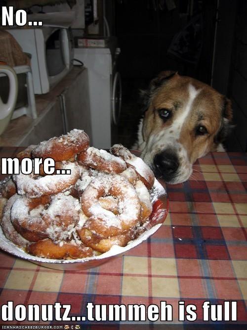 Cheezburger Image 849591552
