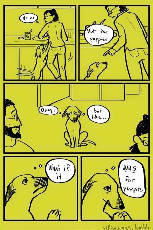 funny-web-comics-puppy-logic