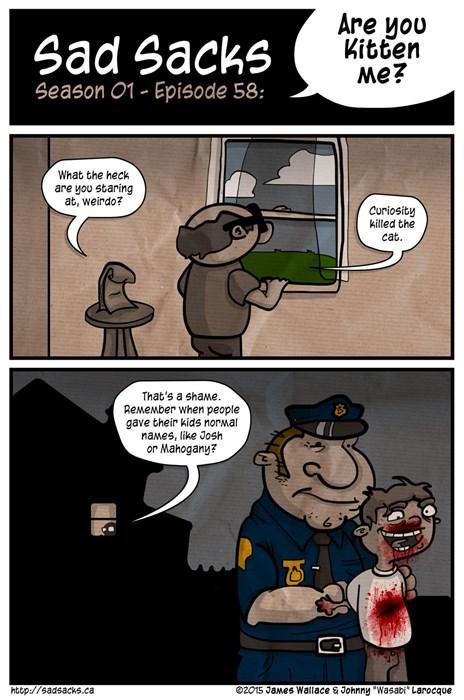 funny-web-comics-we-arent-kitten