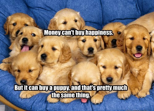 Money can't buy happiness. But it can buy a puppy, and that's pretty much the same thing.