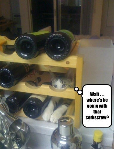 Wait . . . where's he going with that corkscrew?