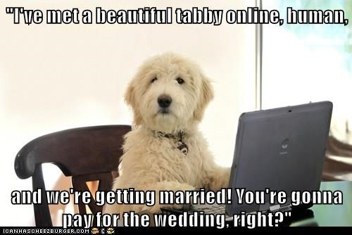animals dogs online wedding dating - 8500373248