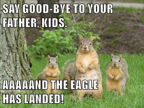 squirrels,parenting