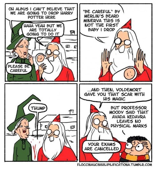funny-web-comics-this-is-how-harry-got-his-scar