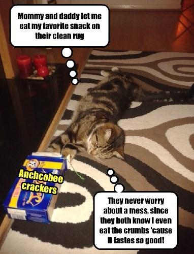 cat snacks cookies - 8500777472