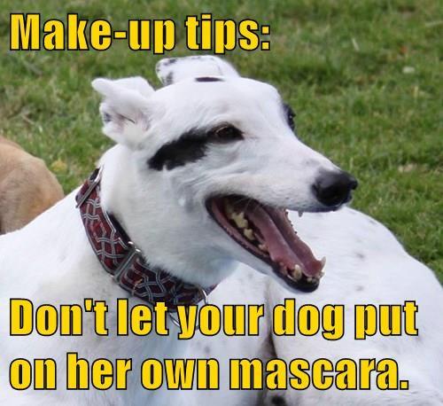 animals make up - 8500795136