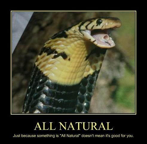 healthy natural poster snake - 8501899008