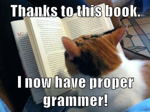 animals reading books Cats - 8502053120