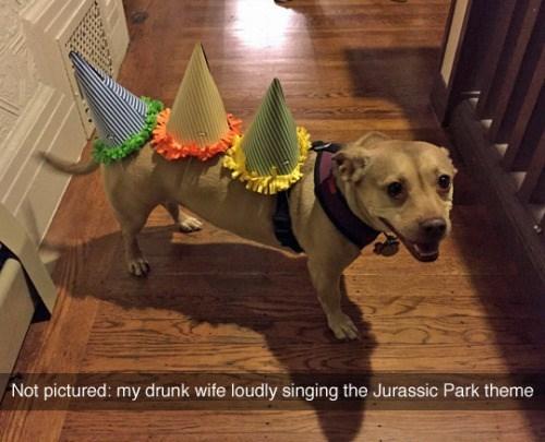 funny dog image jurassic park dog