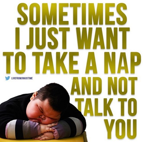 Text - SOMETIMES I JUST WANT TO TAKE A NAP AND NOT TALK TO YOU LIVEFROMSNACKTIME