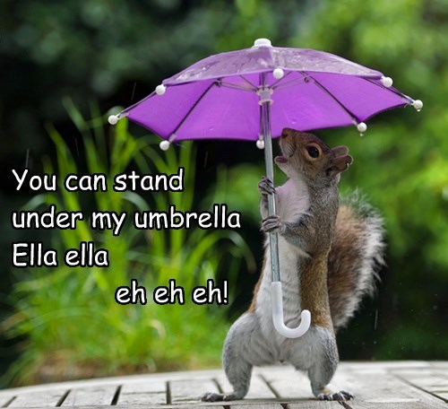 You can stand under my umbrella Ella ella eh eh eh!