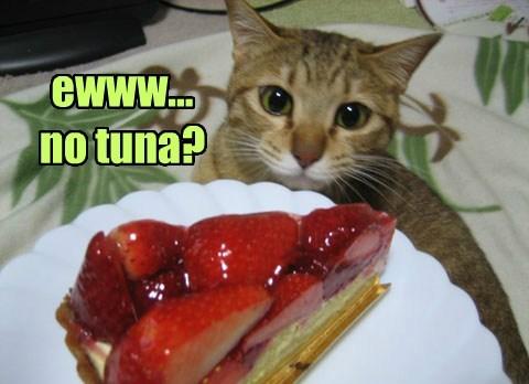 pie dessert Cats - 8502852864