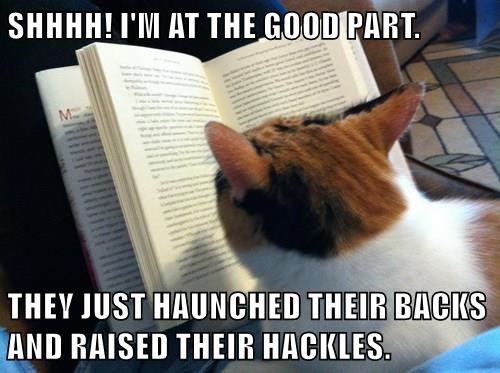 SHHHH! I'M AT THE GOOD PART. THEY JUST HAUNCHED THEIR BACKS AND RAISED THEIR HACKLES.