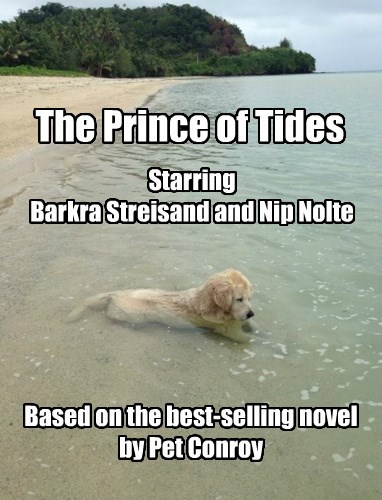 The Prince of Tides Based on the best-selling novel by Pet Conroy Starring Barkra Streisand and Nip Nolte