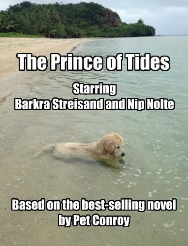 dogs puns beach - 8503242496
